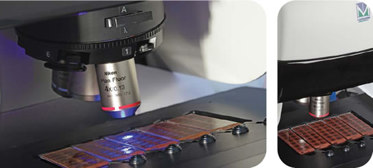 Zenit G-Sight Key Features: fluorescent microscope and LED light source